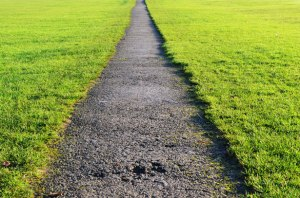 path-and-lawn