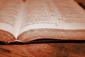 sepia-bible